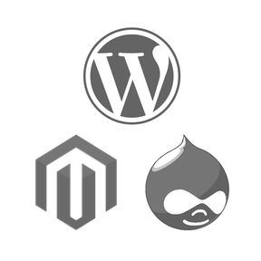 Share File Assets for WordPress, Joomla, Drupal, Magento or TYPO3 hosting with shared file system